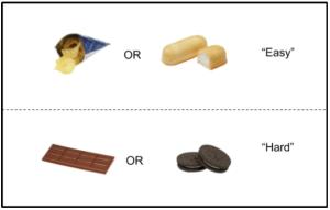 preferences_fig1