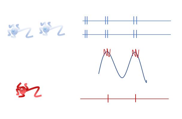 brainwaves_coupling_fig6.png