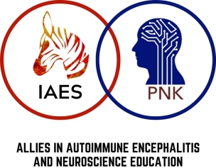 IAES_PNK Partnership logo