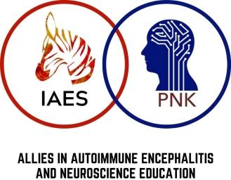 IAES_PNK Partnership logo
